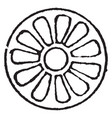 rosette design as the knop and flower by vector image vector image