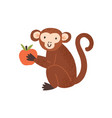cute childish monkey sit and hold apple in little vector image