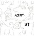 different types of monkeys pattern vector image vector image
