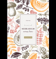 hand sketched autumn card or invitation design vector image vector image