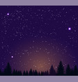 night sky stars and night forest vector image