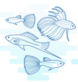 Set of different aquarium fish vector image