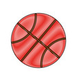 basketball ball icon vector image vector image