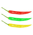 chili pepper - red green and yellow vector image