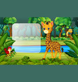 giraffe in the forest vector image vector image