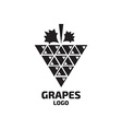 Grapes logo Wine vine logo Grapes logo vector image