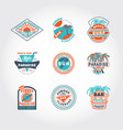 set concept badge vector image