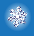 sign white snowflake vector image