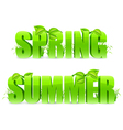 Spring and Summer words vector image