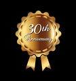 30th Anniversary ribbon vector image