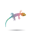 Abstract geckos vector image vector image