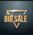 big sale sticker with gold glitter effect vector image