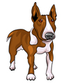 bull terrier dog vector image vector image