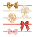 collection satin ribbons decorated with bows vector image
