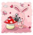 cute cartoon rabbit with a camera vector image vector image