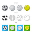 design sport and ball sign collection vector image vector image