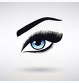 female eye with blue iris and long eyelashes vector image vector image