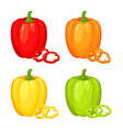 red orange yellow and green pepper vector image