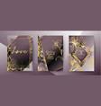 set elegant brochure card background cover vector image vector image