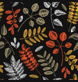 autumn leaves seamless pattern with hand sketched vector image vector image