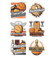 championship cup and ball on basketball icons vector image vector image