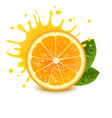 fresh orange with a splash of juice vector image vector image