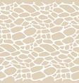 reptile snake piton skin seamless pattern texture vector image