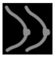 white halftone breast icon vector image vector image