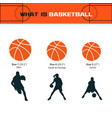 what is basketball vector image