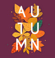autumn leafs on the background flat vector image