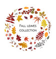 floral watercolor style card design autumn season vector image