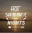 hot summer nights vector image vector image