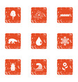reasonable icons set grunge style vector image vector image