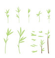 set of stylized branches with leaves isolated on vector image vector image
