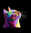 colorful cat isolated on white background vector image vector image