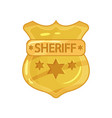 flat of police golden badge vector image