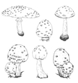 Nice hand drawn mushrooms vector image
