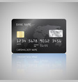 realistic detailed credit card with the vector image vector image