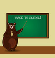 back to school with cute cartoon bear teacher vector image