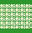 chamomile on a green background vector image vector image