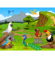 funny different kind of birds cartoon the jungle w vector image vector image