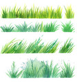 grass painted elements vector image vector image