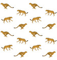 pattern black line yellow cheetah vector image vector image