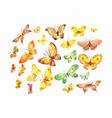 set watercolor yellow brown green butterflies vector image