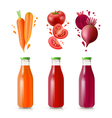 Vegetable Juices Set vector image