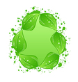 Green eco leaves label isolated on white vector image vector image