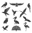 Stylized Birds Silhouettes Black Icons Set vector image vector image
