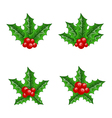 Christmas set holly berry branches vector image
