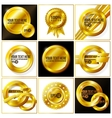 gold abstract set backgrounds for your design vector image vector image