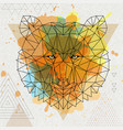 Hipster polygonal animal bear